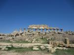 Temple C, Acropolis, Selinunte