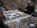 Abundance of fish, Catania fish market