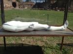 """Nino Longobardi, """"Athlete"""" (one of 4 vitrines), plaster figure, life-size, 2013"""
