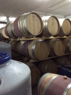Pelter Winery is located at Kibbutz Ein Zivan.  These barrels are for the red wine.  The Golan is the wine growing region of the country and they produce wine for local consumption as well as for export.