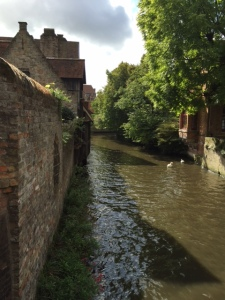 The houses are along canals that run through the town center and have quite a few resident swans to add to the charm.