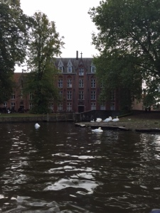 """One of the canals has been dammed at the end to create a """"Lover's Lake"""" where there are 100s of swans and ducks."""