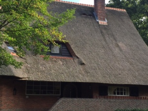 There are fewer and fewer of these roofs but they are quite lovely.  Hope people keep them up!